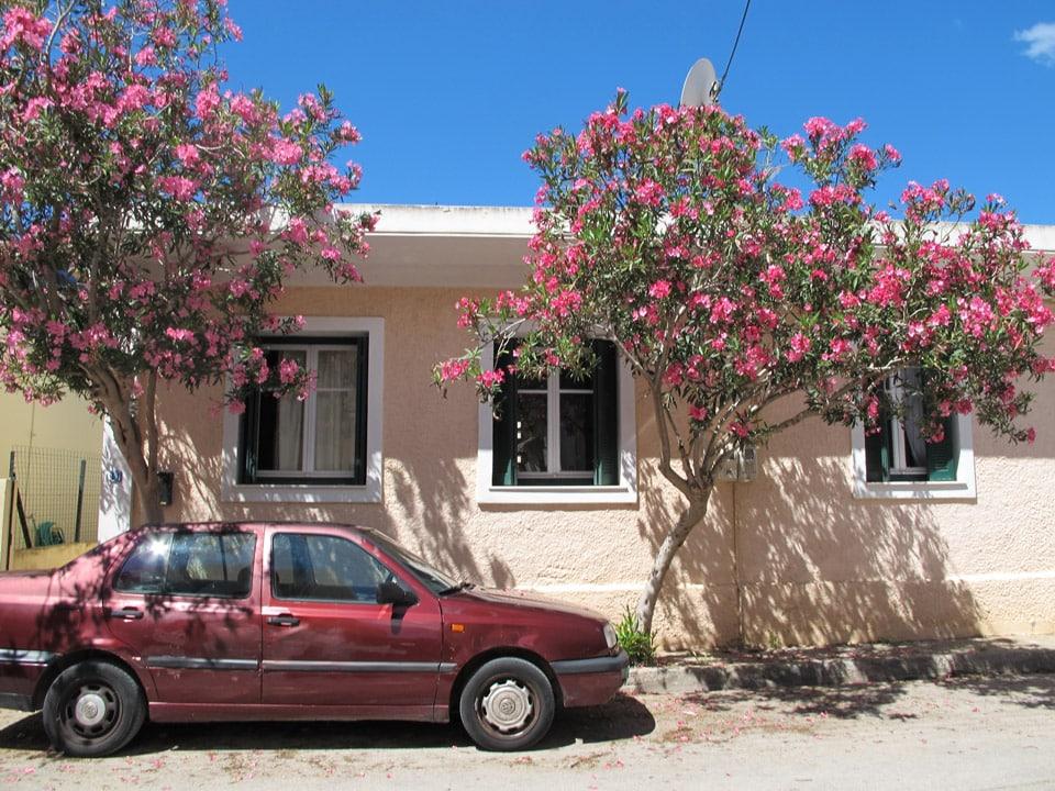 Road trip en Céphalonie par il etait une veggie