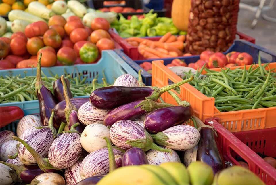 devenir végétarien en 3 étapes avec iletaituneveggie.com