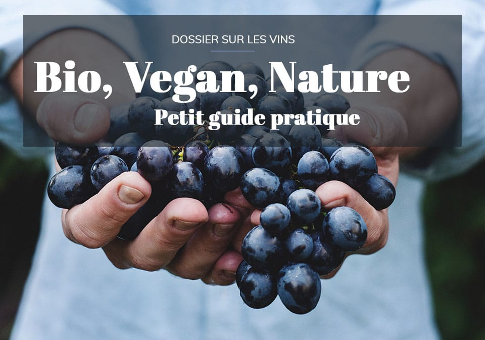 vin bio vin vegan vin nature differences