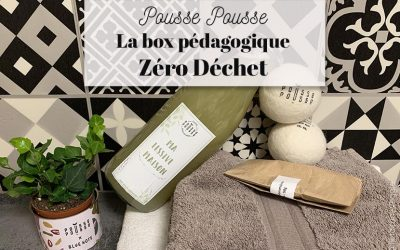 Pousse Pousse, la box DIY zéro déchet